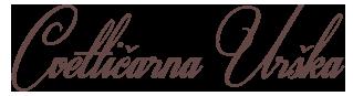 logo-319x87-80
